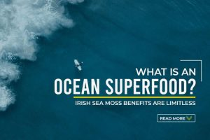 What is an Ocean Superfood -Irish Sea Moss Benefits are limitless