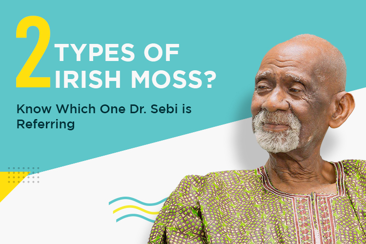 2 Types Of Irish Moss? Know Which One Dr. Sebi Is Referring